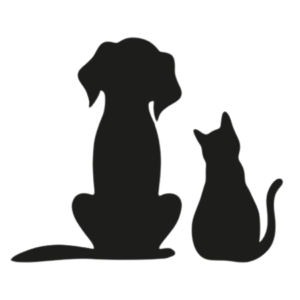 Best Pet Sitting & Pet Walking Services in NYC